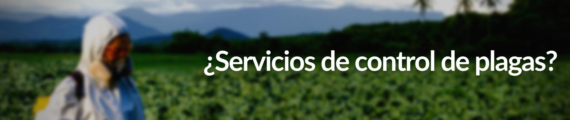 SERVICIOS DE DESINSECTACIÓN Y FUMIGACIÓN